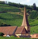 Alsace v Germany Wine Tasting in Edinburgh, Scotland