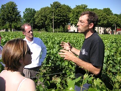 Escorted wine tours with Rose Murray Brown MW
