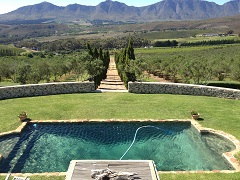 South African wine tour with Rose Murray Brown MW